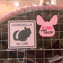 【Chinchillaholic】マグネットステッカー(CHINCHILLA IN CAR)