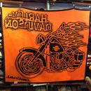 HARLEY DAVIDSON  Ladical blanket