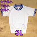 小学校体操着(上)半袖運動シャツ 3L