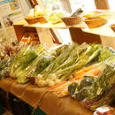 野菜セットM 3回分(送料込)