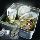 【3月企画】三陸赤崎産牡蠣のカンカン焼き <冷凍> *送料込み