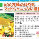 7/28(土)開催400万輪のゆりをフォトジェニックに撮ろう!!
