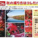 11/24(土)開催秋の撮り方はコレだ!!in真岡井頭公園
