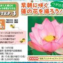7/21(土)開催蓮の花を撮ろう!!