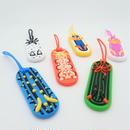 Sea slug Gear tag