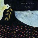 Y&B / Olive E Castor