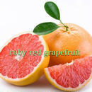 Ruby Red Grapefruit 100ml