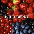WILD BERRY 100ml