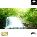 2035101 ■ 奥入瀬渓流 銚子大滝