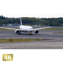 1031081 ■ 成田空港 第1ターミナル TAXING