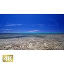 1026024 ■ 黒島 喜屋武御嶽海岸