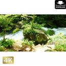 2035032 ■ 奥入瀬渓流 阿修羅の流れ