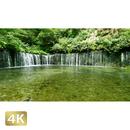 1009013 ■ 長野・群馬 白糸の滝