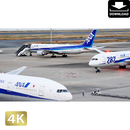 2028048 ■ 東京 羽田空港