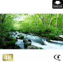 2035074 ■ 奥入瀬渓流 三乱の流れ