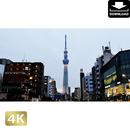 2028057 ■ 東京 スカイツリー