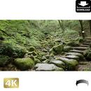 2037052 ■ 御岳山 ロックガーデン