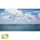 1038028 ■ 石垣島 太平洋