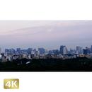 1028006 ■ 東京 赤坂方面夕景