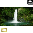 2010023 ■ 静岡 浄蓮の滝