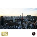 1028078 ■ 東京 東京タワー