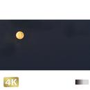 1026002 ■ 黒島 月