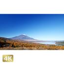 1015020 ■ 富士山