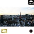 2028078 ■ 東京 東京タワー