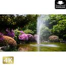 2033005 ■ 柿田川