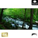 2035022 ■ 奥入瀬渓流 三乱の流れ