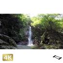 1004004 ■ 秋川渓谷 払沢の滝