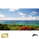 1038035 ■ 石垣島 玉取崎展望台