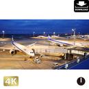 2028055-2 ■ 東京 羽田空港