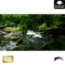 2035083 ■ 奥入瀬渓流 阿修羅の流れ