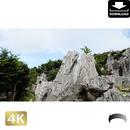 2042096 ■ 沖縄 大石林山
