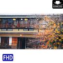 4043106 ■ 京都 紅葉