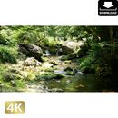 2004020 ■ 秋川渓谷 北秋川