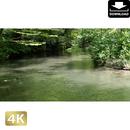 2035002 ■ 奥入瀬渓流