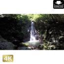 2004001 ■ 秋川渓谷 払沢の滝