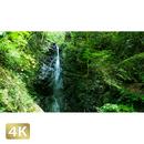 1004059 ■ 秋川渓谷 南秋川 龍神の滝