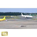 1031050 ■ 成田空港 第2ターミナル TAXING