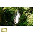 1004011 ■ 秋川渓谷 払沢の滝
