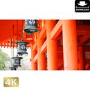 2043059 ■ 京都 平安神宮