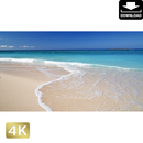 2013020 ■ 沖縄本島 瀬底島 瀬底ビーチ