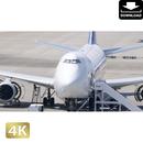 2031104 ■ 成田空港 747
