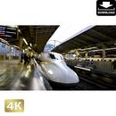 2028065 ■ 東京 東京駅新幹線