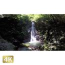 104001 ■ 秋川渓谷 払沢の滝