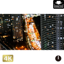 2028077 ■ 東京 新橋
