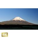 1018055 ■ 富士山 朝霧高原