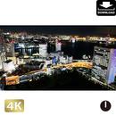 2028079 ■ 東京 浜崎橋
